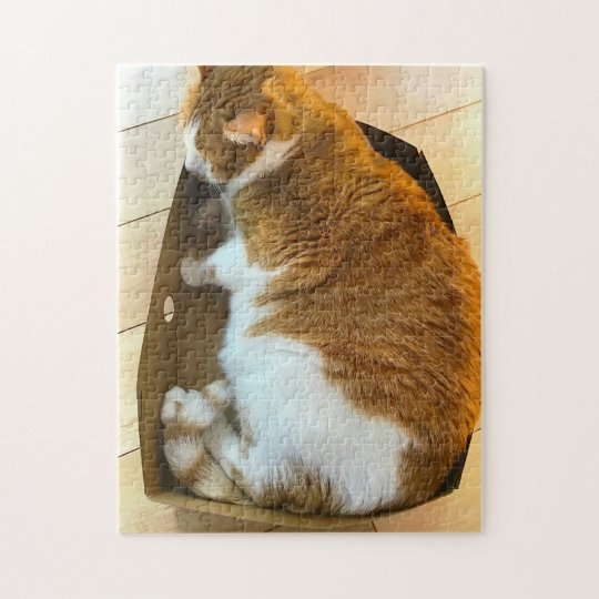 Overweight cat in cardboard box jigsaw puzzle
