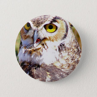 Owl 2 Inch Round Button