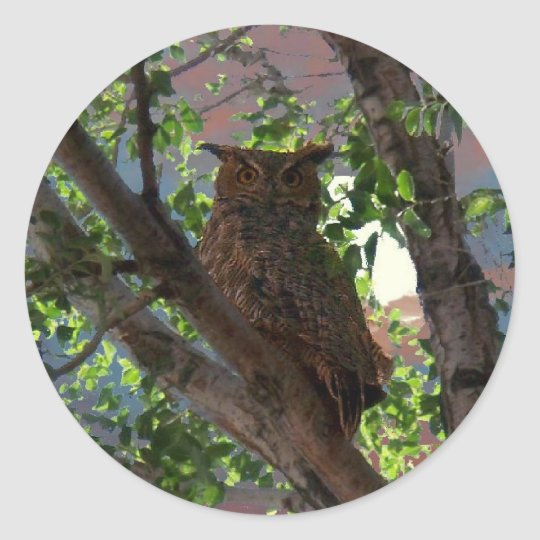 Owl and the Moon Classic Round Sticker