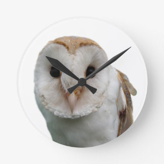 Owl animal photo clock