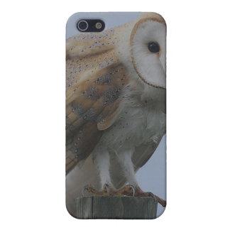 Owl Bird Feathers Animal Nature Peace Love Destiny iPhone 5 Cover