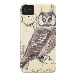 Owl Case-Mate iPhone 4 Barely There Universal Case