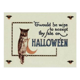 Owl Crescent Moon Postcard