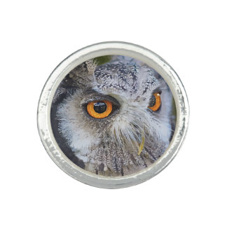 OWL face Photo Rings
