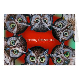 OWL FACES CHRISTMAS by Slipperywindow Card