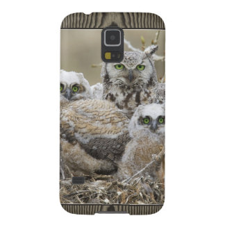 Owl Family Nature Birds Animals Cases For Galaxy S5