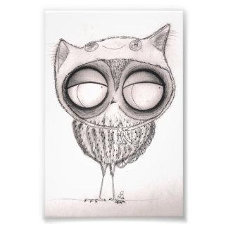 Owl in Cat-Hat Photo Print