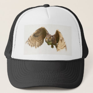Owl in Flight Hat