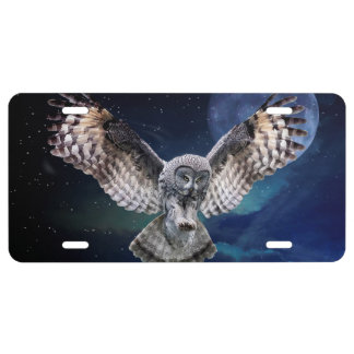 Owl in Flight License Plate