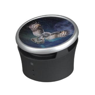 Owl in Flight Speaker