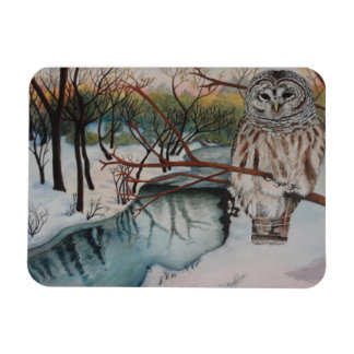 Owl in Snow Magnet