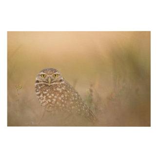 Owl In The Mist Wood Wall Art
