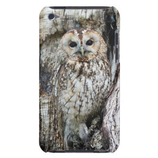 Owl in Tree Cell Phone Case