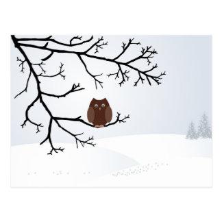 Owl in winter postcard