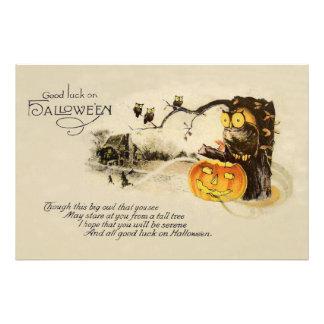 Owl Jack O' Lantern Pumpkin Tree Photographic Print