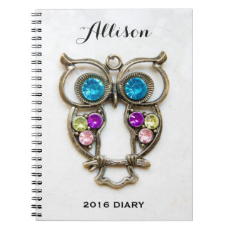Owl Jewerly Photo Colorful Eyes and Wings Notebook