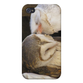 Owl kisses iPhone 4 cover