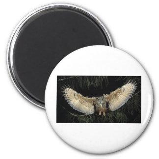 Owl Landing Magnet