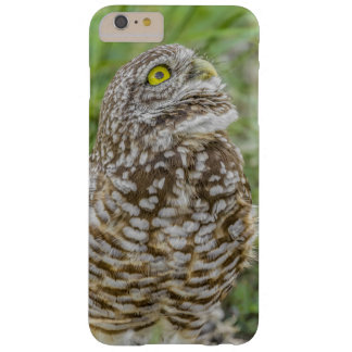Owl Looking Up Phone Case