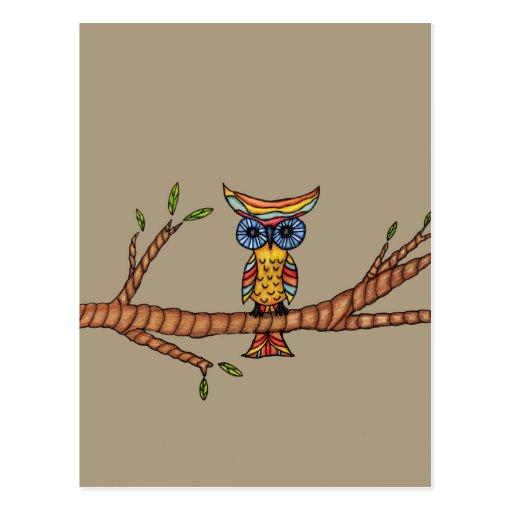 Owl on a Branch Postcard