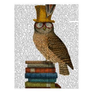 Owl On Books Postcard