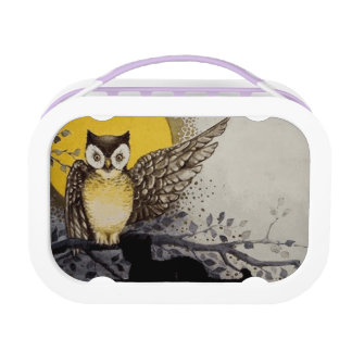 Owl on Branch In front of Moon watching black cat Lunchboxes