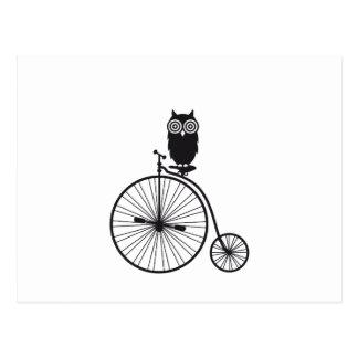 owl on old vintage bicycle postcard
