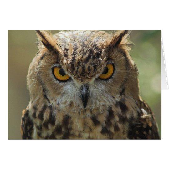 Owl Photo Greeting Card