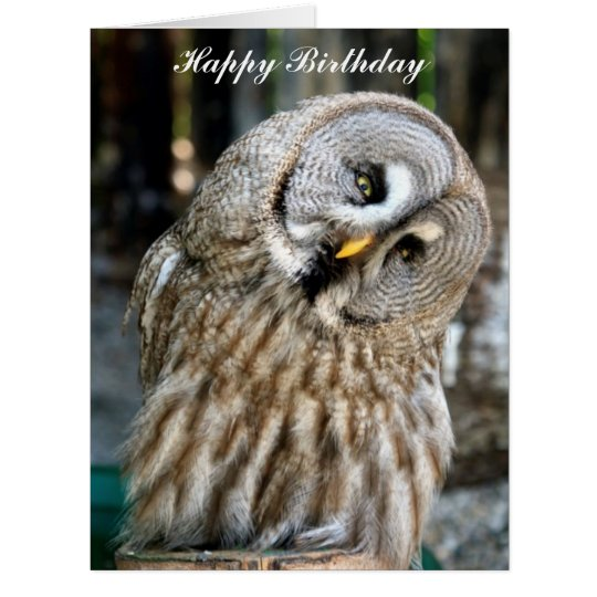 Owl portrait beautiful custom birthday card