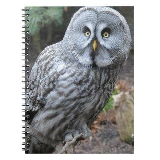 Owl Portrait Photograph Notebook