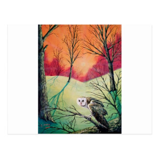 "Owl Products featuring ""Soren: Owl of Ga' Hoole"" Postcard"