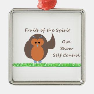 Owl Show Self Control Premium Square Metal Ornamen Silver-Colored Square Ornament