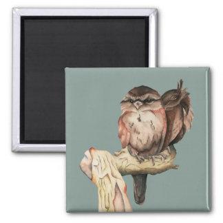 Owl Siblings Watercolor Portrait Square Magnet