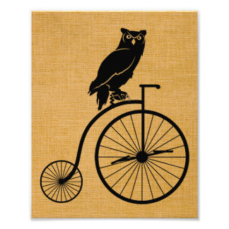 Owl Sitting on Vintage Penny Farthing Bicycle Photographic Print