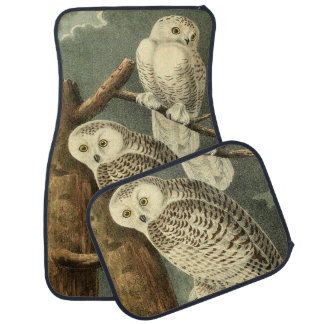 Owl Snowy Audubon Bird Art Illustration Birding Car Mat
