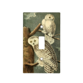 Owl Snowy Audubon Bird Art Illustration Birding Light Switch Cover