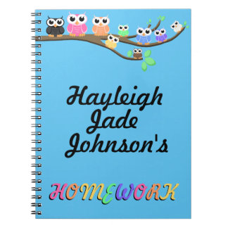 """""""OWL Together Now"""" Notebooks"""