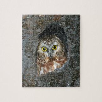 owl tree baby inside jigsaw puzzle
