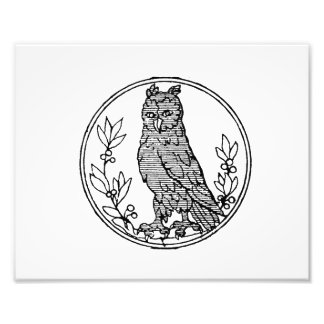 Owl vintage jagged drawing png photo