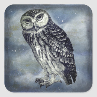 Owl Wildlife Stickers