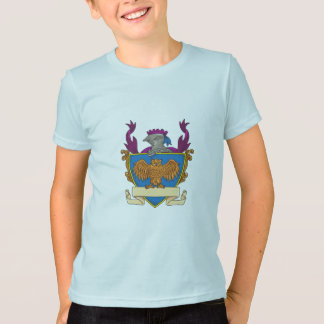 Owl Wings Spread Knight Helmet Drawing T-Shirt