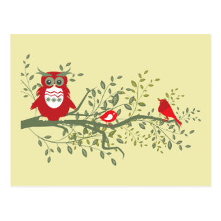 Owl ~ Wise Red Owl Sitting with Two Songbirds Postcard