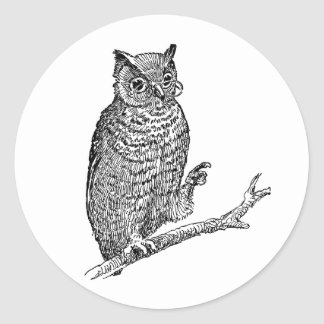 Owl With Glasses Classic Round Sticker