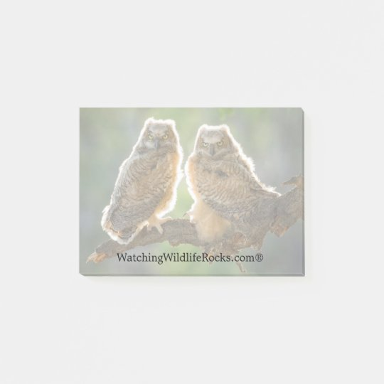Owlets Post it Notes pad