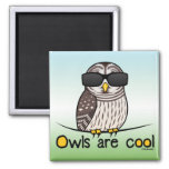 Owls are cool! fridge magnets