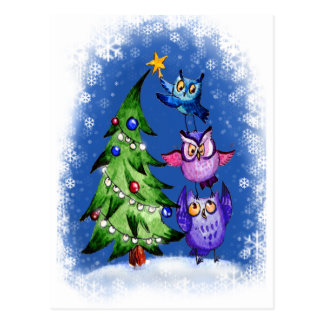 Owls Christmas blue Postcard