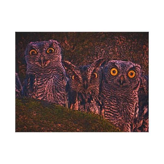 Owls in an Oak Hollow Canvas Print