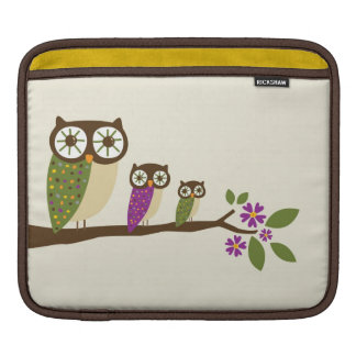 Owls on a branch cover