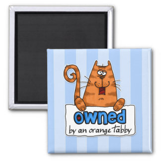owned orange tabby square magnet