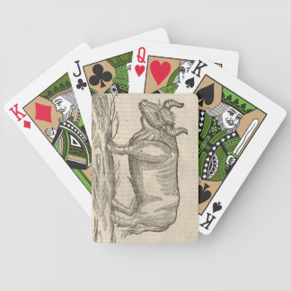 Ox Bicycle Playing Cards